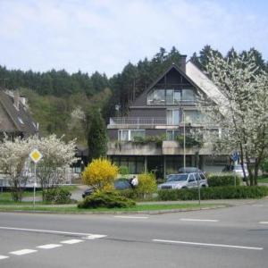 Hotelbilleder: Waldhotel Tropfsteinhöhle, Wiehl