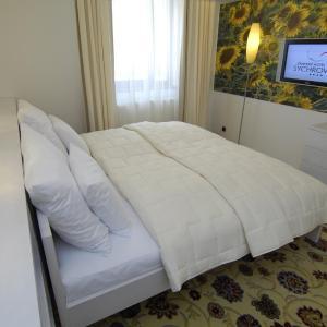 Hotel Pictures: EA Zámecký hotel Sychrov, Sychrov