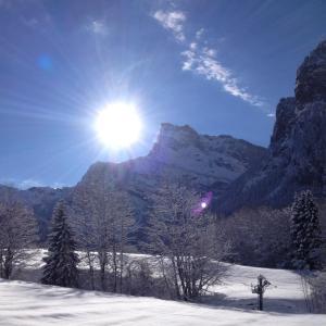 Hotel Pictures: Chalet La R'Batte, Sixt
