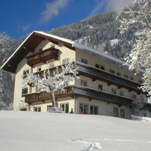 Hotel Pictures: Pension Demlhof, Finkenberg