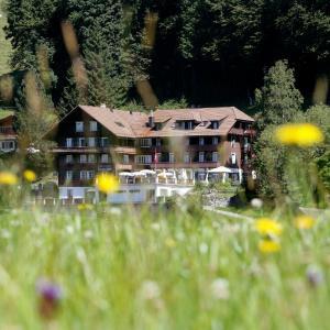 Hotel Pictures: Hotel Restaurant Hammer, Eigenthal