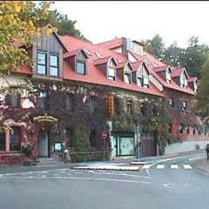 Hotel Pictures: Hotel 'Zur Brezel', Alzenau in Unterfranken