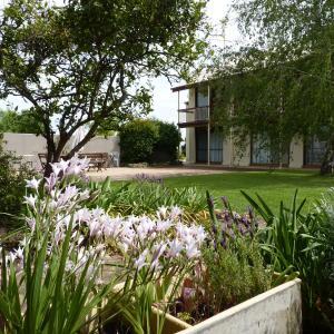 酒店图片: Coonawarra Motor Lodge, Penola