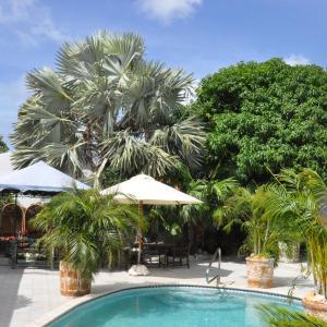 Fotos de l'hotel: Aruba Harmony Hostel, Oranjestad