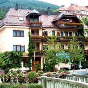 Hotel Pictures: Hotel Restaurant Alte Linde, Bad Wildbad