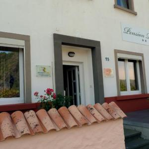 Hotel Pictures: Pension Röhrig, Hirzenach