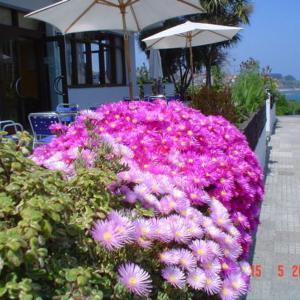 Hotel Pictures: Hotel Los Laureles, Luanco