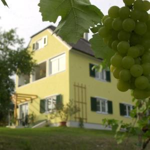 Hotelbilleder: Landhaus Sammt, Klöch