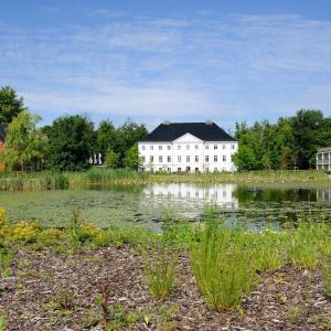 Hotelbilleder: Schlossgut Gross Schwansee, Groß Schwansee