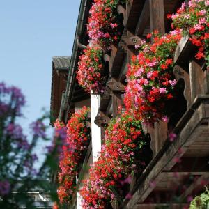 Hotelbilleder: Hotel Neuer am See, Prien am Chiemsee