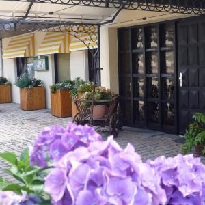 Hotelbilleder: Landhotel Maarheide, Niederdürenbach