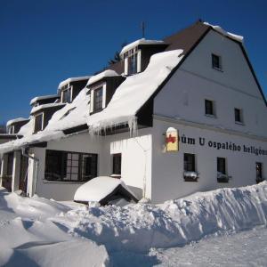 Hotel Pictures: Dům U ospalého heligónu, Lipova Lazne