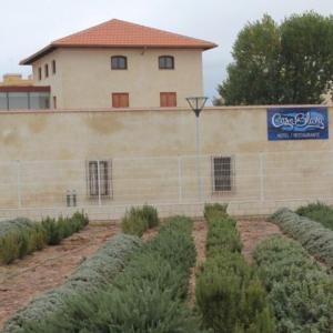 Hotel Pictures: Hotel Restaurante Casa Blava, Alzira