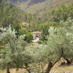 Hotel Pictures: Hotel Rural 'Hospederia Las Cañadillas', El Tranco