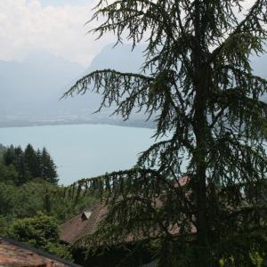 Hotel Pictures: Studio Talloires Lac d'Annecy, Talloires