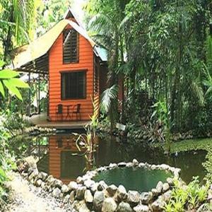 ホテル写真: Rainforest Hideaway, ケープ・トリビュレーション
