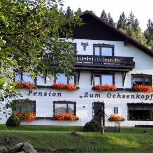 Hotel Pictures: Hotel-Pension 'Zum Ochsenkopf', Bischofsgrün
