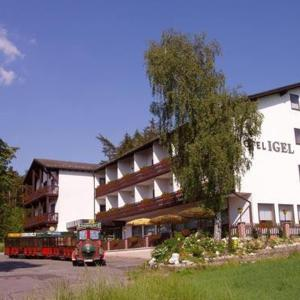 Hotelbilleder: Hotel Igel, Püchersreuth