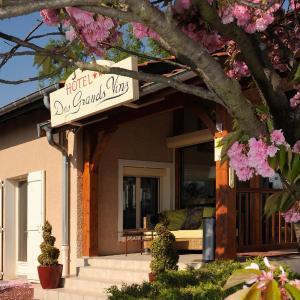 Hotel Pictures: Hotel Des Grands Vins, Fleurie