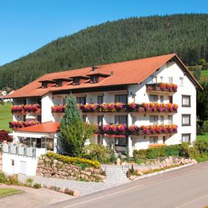 Hotelbilleder: Hotel Birkenhof, Baiersbronn