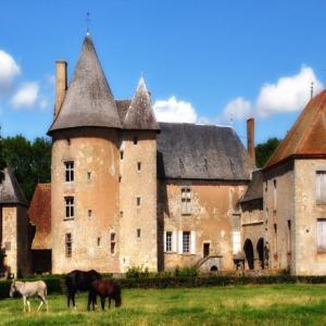 Hotel Pictures: Château du Max, Le Theil