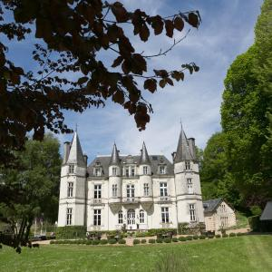 Hotel Pictures: Château de Vallagon, Bourré