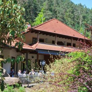 Hotel Pictures: Landgasthof Am Teufelstisch, Hinterweidenthal