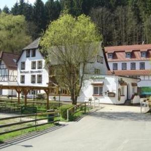 Hotel Pictures: Waldhotel Pfarrmühle, Eisenberg