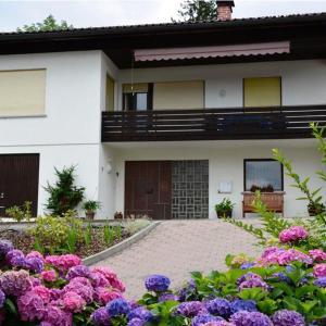 Hotel Pictures: Haus Gabi, Dornbirn