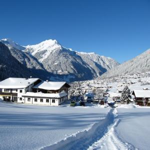 Φωτογραφίες: Appartementhotel Matschun, Sankt Gallenkirch
