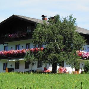 Hotellikuvia: Vorderwimmhof, Abtenau