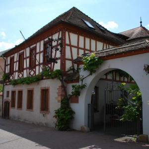 Hotelbilleder: Landhotel St. Gereon, Nackenheim