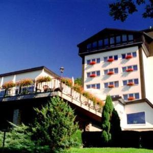 Hotel Pictures: Hotel Reifenstein, Kleinbartloff