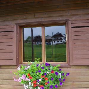 Zdjęcia hotelu: Ferienhaus Forellenwirt, Grünbach