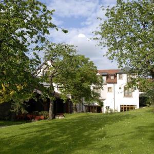 Hotel Pictures: Auberge Saint Walfrid, Sarreguemines