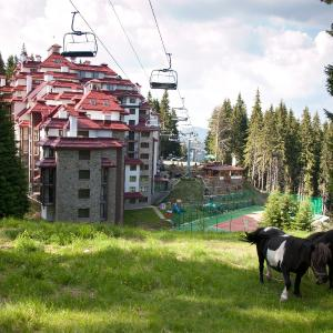 Fotos de l'hotel: Complex Kamelia, Pamporovo