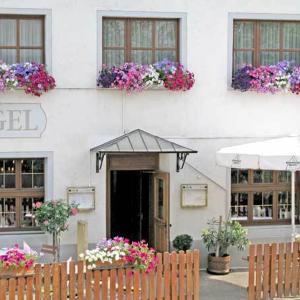 Hotelbilleder: Hotel Restaurant Engel, Pfaffenweiler