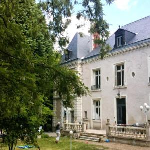 Hotel Pictures: Chambres d'Hôtes Château de la Marbelliere, Joue-les-Tours