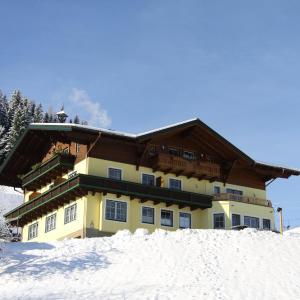 Photos de l'hôtel: Hinteregghof, Forstau