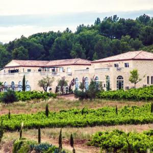 Hotel Pictures: Château de Valloubière, Saint-Jean-de-Fos