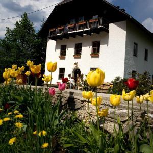 Hotellikuvia: Ferienhof Rotbuchner, Vorderstoder