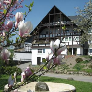 Hotel Pictures: Ferienwohnung Otto, Schmallenberg