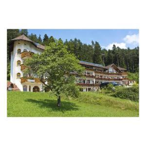 Hotel Pictures: Wellnesshotel Basler Hof am Schlosswald, Lauterbach
