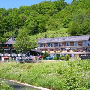 Hotelbilleder: Landhotel Weinhaus Treis, Weinähr