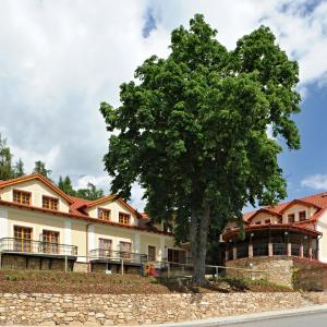 Hotel Pictures: Hotel Gold Chotoviny, Chotoviny