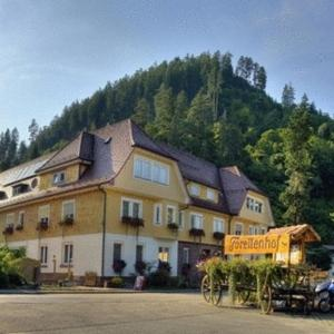 Hotelbilleder: Hotel Teinachtal, Bad Teinach-Zavelstein