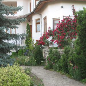 ホテル写真: Guest House Astra, アルバナシ