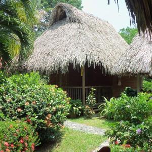 Hotel Pictures: Posadas Ecoturisticas San Rafael, El Zaino