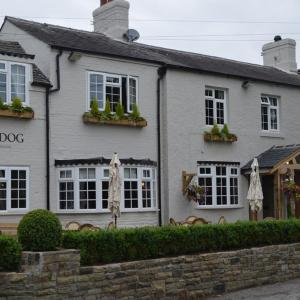 Hotel Pictures: The Dog in Over Peover, Knutsford