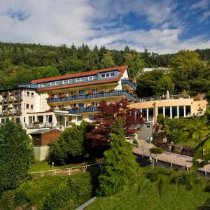Hotel Pictures: Hotel Rothfuss, Bad Wildbad